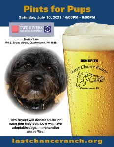 Pints for Pups @ Two Rivers Brewing Tap Room